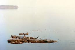 museo della laguna