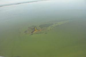 museo laguna; Museo Archeologico della laguna di Marano Lagunare, museo della laguna